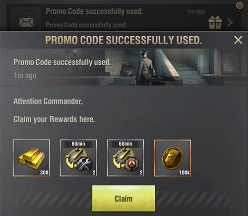 promo code successfully used